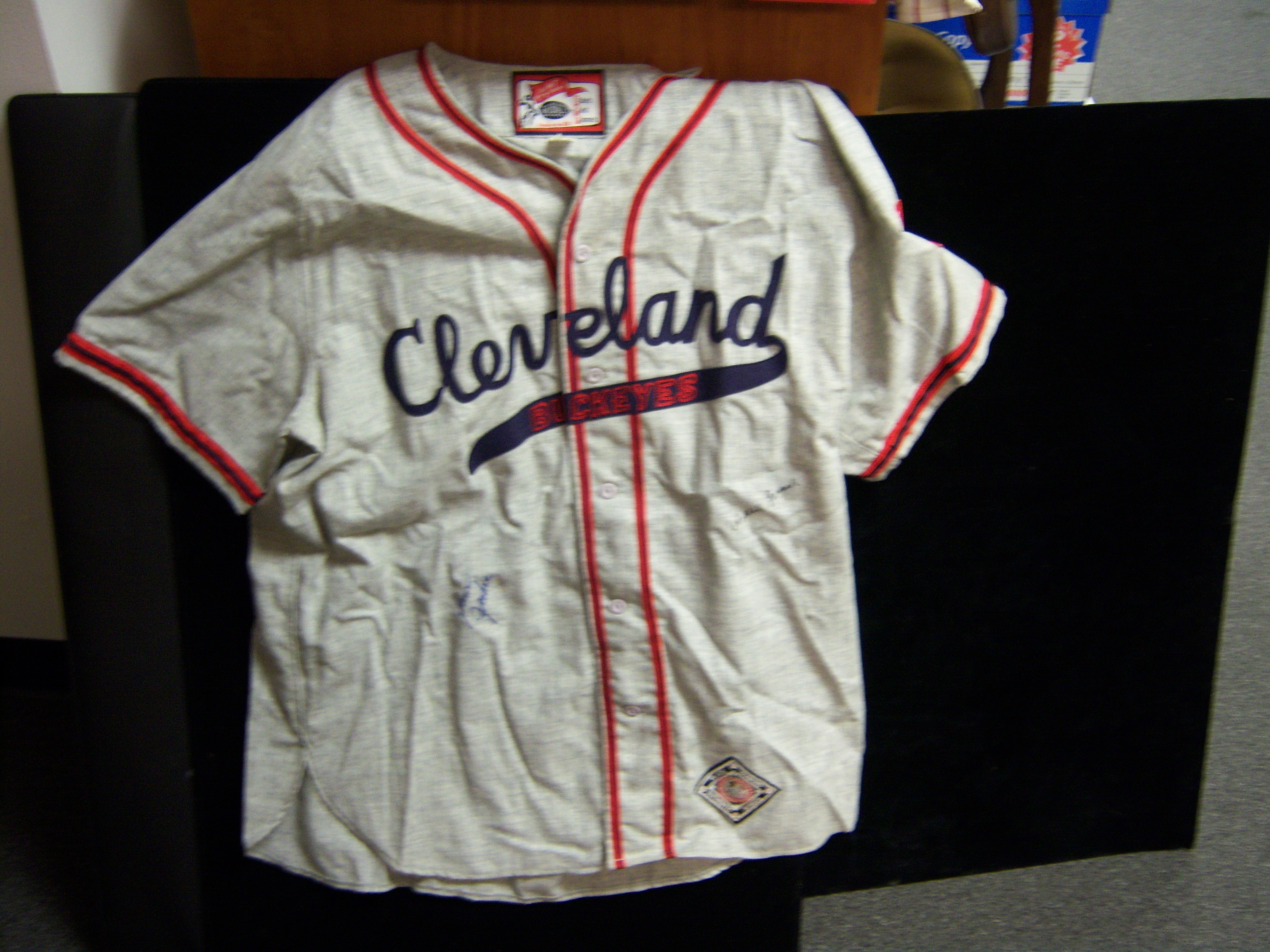 outlet store 99ff7 f89c0 Lot Detail - Ebbets Field Flannels Cleveland Buckeyes Negro ...